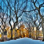 O Central Park fica ainda mais inspirador nessa coleção de registros do jornalista Rodrigo Alves. Com moderação e auto-controle, dá para aproveitar a viagem, interagir com os pontos visitados e ainda levar para casa belas imagens de recordação (Foto: Rodrigo Alves/Arquivo Pessoal)