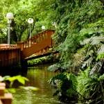 Encantador em cada detalhe (seja o detalhe natural ou arquitetônico), o passeio pelo Parque do Mirante é um passeio obrigatório para quem visita os pontos turísticos da cidade (Foto: Marilia Vasconcellos)