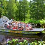 A embarcação - por lá chamada de airboat - chega até 80 quilômetros por hora nas águas do Lago Cypress. E o que vemos? Jacarés, jacarés e... mais jacarés! Além de muito pântano, águias e - acredite! - bois (na região do pasto, lógico) (Foto: Divulgação/Wild Florida)