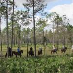 Ah, como faz bem passar algumas horas no campo. O passeio a cavalo é um dos roteiros mais vendidos do Forever Florida (Foto: Eduardo Oliveira)