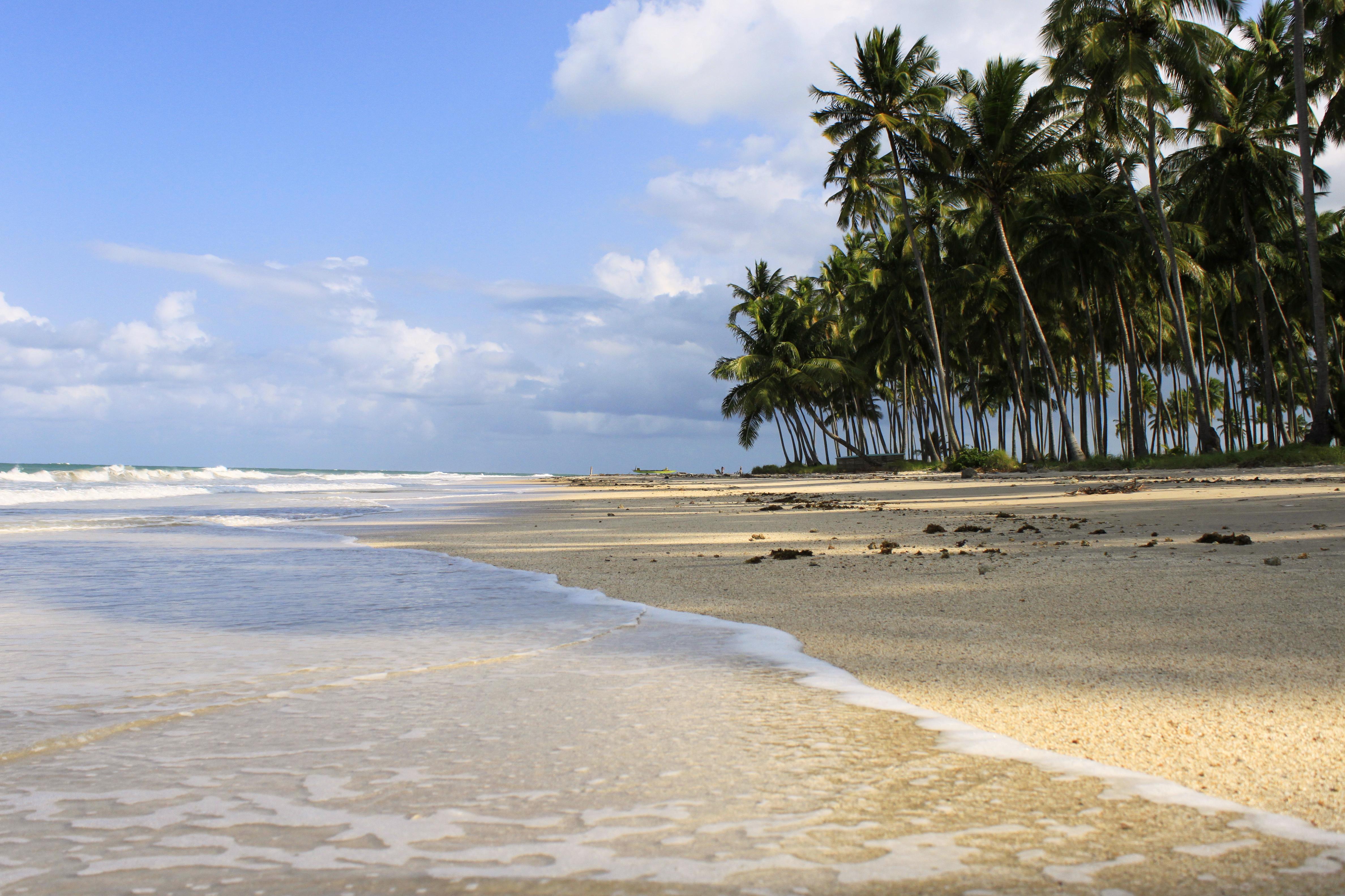 Relaxar, folgar, descansar, sossegar, se renovar = Praia dos Carneiros