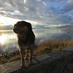 O Seno de La Última Esperanza fica ainda mais sedutor nos finais de tarde de Puerto Natales (Foto: Eduardo Oliveira)