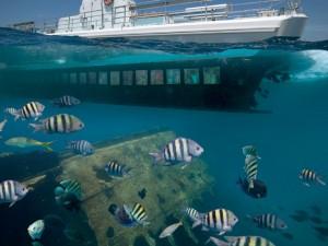 Passeio de submarino pelas águas caribenhas (Foto: Divulgação)