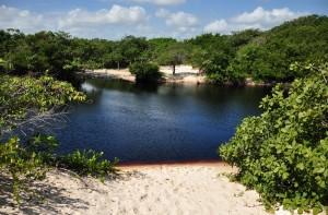 Já para quem prefere água doce, há a opção de se refrescar no Lago da Princesa, também conhecido por ali como Lago de Coca-Cola, que tem uma cor escura devido à vegetação local (Foto: licença Wikimedia Commons)