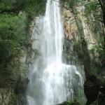 Salto Sete: é uma das mais tranquilas cachoeiras da região e o acesso à sua base é feito por uma trilha de aproximadamente 500 metros (Foto: Prefeitura de Prudentópolis)