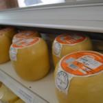 O queijo montanhês harmoniza bem com vinhos tintos jovens e frutados e frisantes, assim como vinhos maduros e robustos tipo do Porto (Foto: Divulgação)