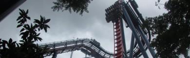 Especial Parques em Orlando: dicas para curtir o Busch Gardens